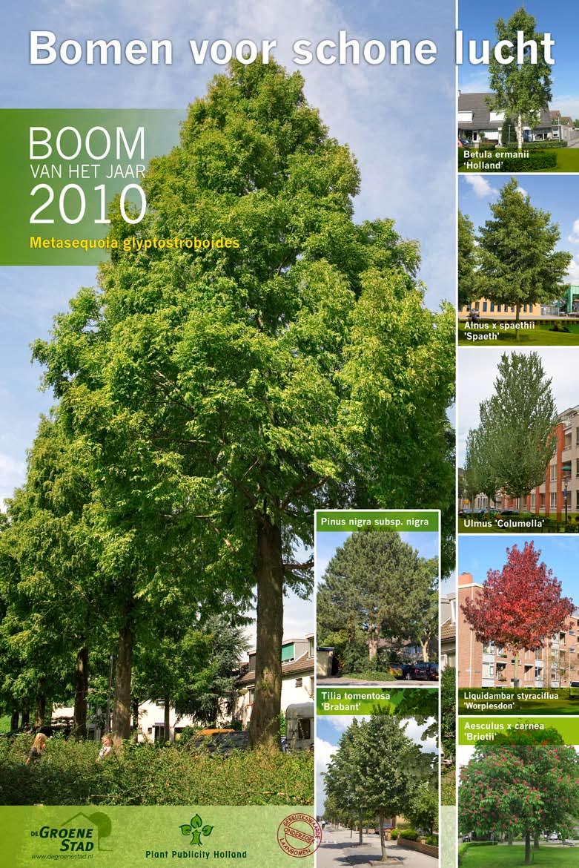 Boom van het Jaar 2010