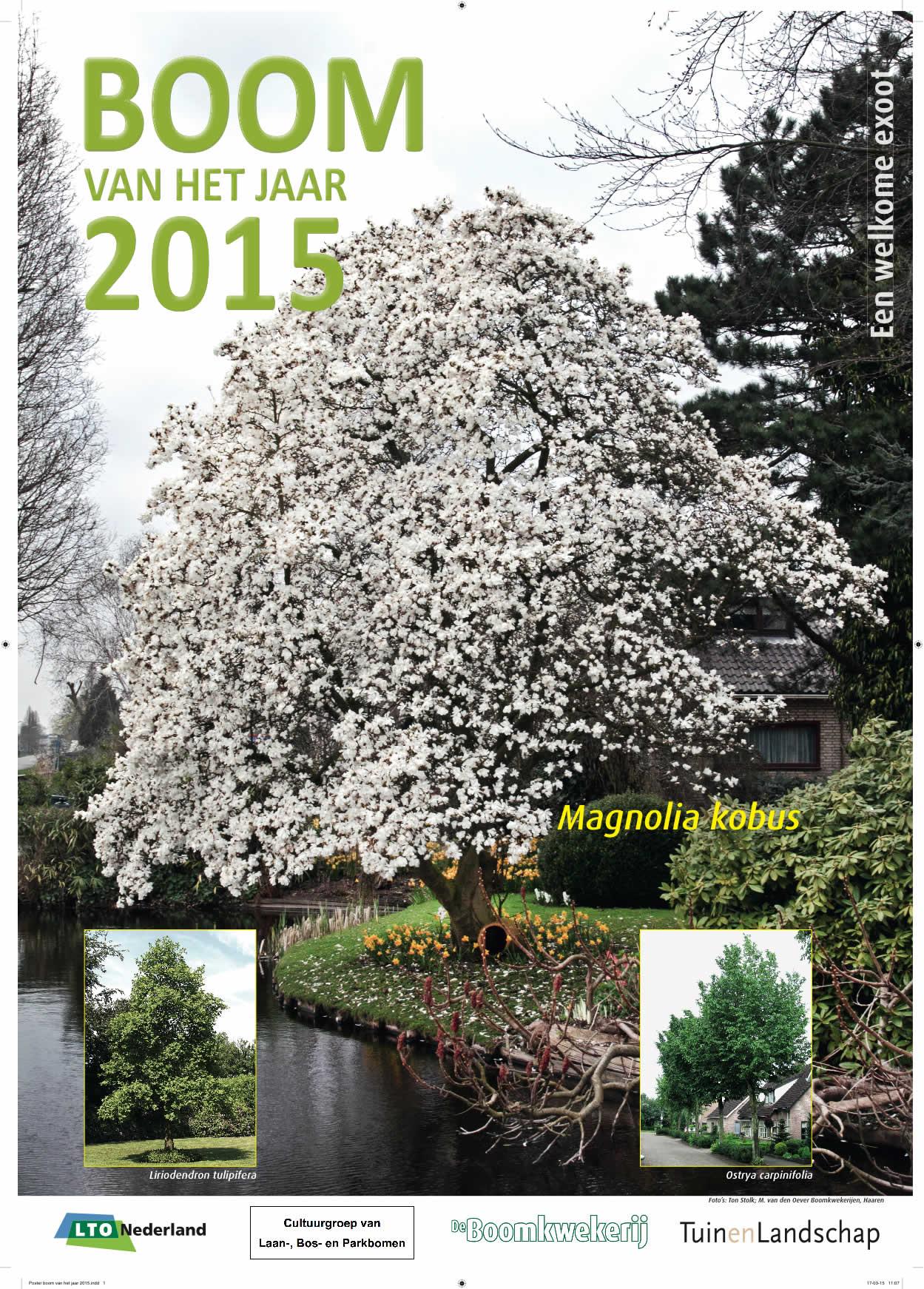 Poster boom van het jaar 2015